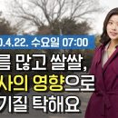 유튜브 오늘의 동영상 날씨 4월 22일 07시 기준