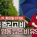 오늘의 동영상 날씨 5월 19일 07시 기준 전국 흐리고 비
